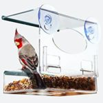 Windo Bird Feeder