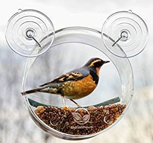 Round Window Bird Feeder
